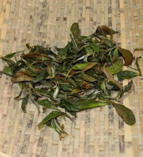 ohana-green-tea-600x662