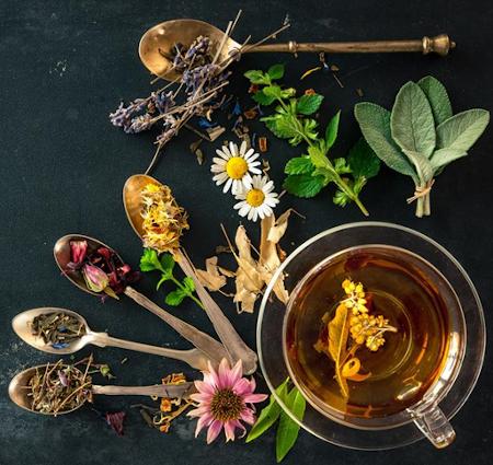 organic loose leaf tea Seattle