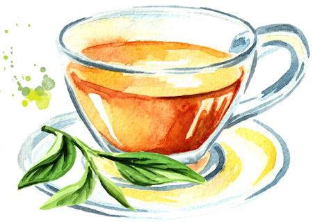 why choose organic tea Seattle